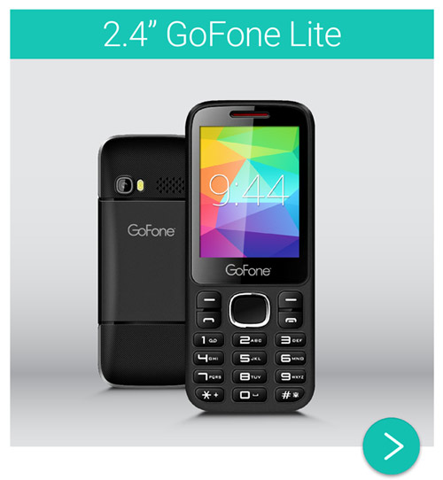 GoFone Feature Mobile Phone